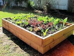 Backyard Planter Box Ideas Raised Vegetable Garden Planter Boxes Key Hole Raised Bed Garden