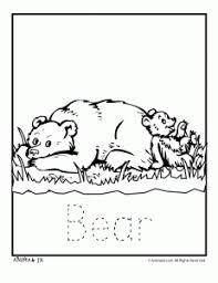 image free printable polar bear coloring pages kids bear
