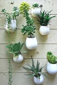 hanging wall planter u2013 openpoll me