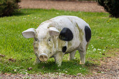pig ornament decoration stock photography image 26923172