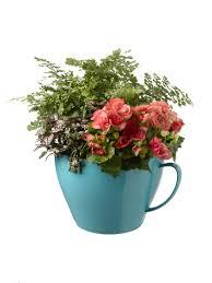 tea cup planter home design styles