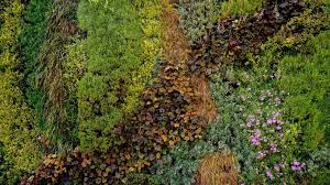 how london is embracing the vertical garden or living wall