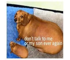 Don T Talk To Me Meme - favorite meme tournament 2016 navy seal copypasta wins