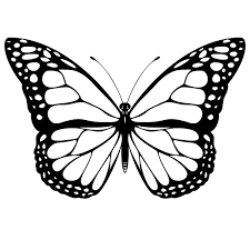 monarch butterfly clipart free clipartsgram com