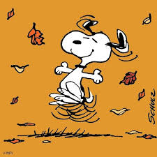 25 snoopy videos ideas snoopy wallpaper