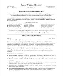 Senior Sales Executive Resume Samples Non Profit Executive Resume Samples U0026 Examplessample Executive