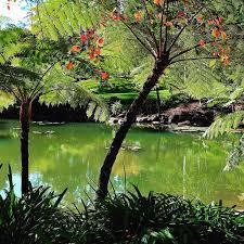 botanic gardens melbourne melbourne australia beautiful plc