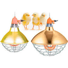 heating lamp all the agricultural manufacturers videos