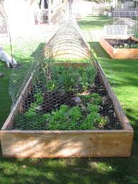 Family Farm And Garden Boho Farm And Home Garden And Raised Beds