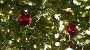 christmas tree lights christmas decoration stock footage video