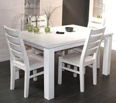 Esszimmerst Le Massivholz Buche Esszimmerstühle Weiß Holz Möbelideen Bassalt Stuhl Ikea Více