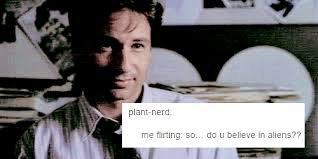 X Files Meme - 1k txf the x files mulder x scully long post txfedit mine txf