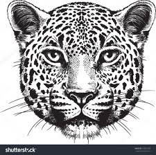 animal face sketch drawing art library
