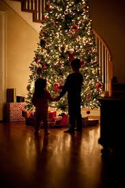 17 best images about christmas time on pinterest trees blue