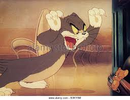 jerry mouse tom jerry stock photos u0026 jerry mouse tom jerry