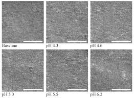 Effect of pH Variations in a Cycling Model on the Properties of