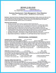 Best Profile Summary For Resume Profile Summary For Sales Resume Best Free Resume Collection