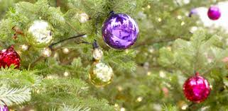 how to select and care for a live christmas tree today u0027s homeowner