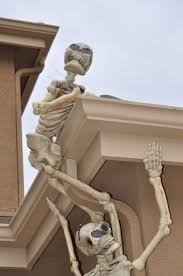164 best halloween skeletons u0026 skulls images on pinterest