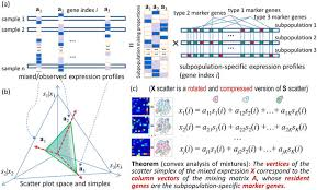 An Information Maximization Approach To Blind Separation And Blind Deconvolution Mathematical Modelling Of Transcriptional Heterogeneity Identifies
