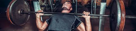 improve your bench press in 4 weeks predator nutrition