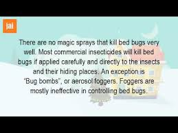 Bug Bombs For Bed Bugs Do The Bed Bug Sprays Work Youtube