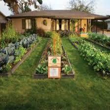urban gardeners phoenix home u0026 garden