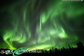 The Aurora Chasers Northern Lights Aurora Photography Tours