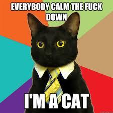 Calm The Fuck Down Meme - everybody calm the fuck down cat meme cat planet cat planet