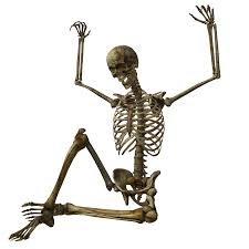 halloween skeleton images halloween skeleton png pic png mart