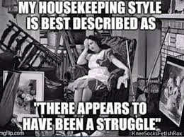 Housekeeping Meme - my housekeeping style can best be described as there appears to