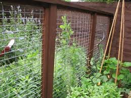 Fencing Ideas For Backyards by Outdoor U0026 Landscaping Brilliant Backyard Fence Ideas For Garden