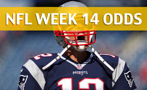 What Are The Super Bowl Predictions From 14 Animals Across The - patriots vs dolphins odds predictions picks preview week 14 2017