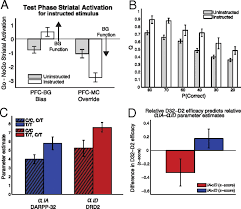 design doll 4 0 0 9 dopaminergic genes predict individual differences in susceptibility