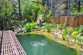Natural Swimming Pool Brooklyn U0027eco Triplex U0027 With Natural Swimming Pool And Green Roof