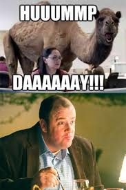 Hump Day Camel Meme - tfw you realize chris sullivan toby voiced the hump day camel