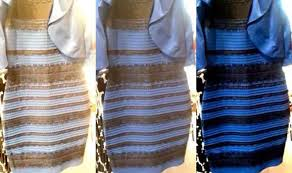 of the dress the dress white and gold or blue and black frock divides the