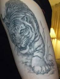 33 best tiger print tattoos images on pinterest tigers costume