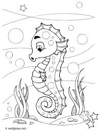 Petit Hippocampe  coloriage Animaux gratuit sur Webjunior