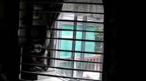 cheap basement window bars find basement window bars deals on