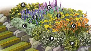 Flower Bed Plan - marathon bloomers perennial garden plan
