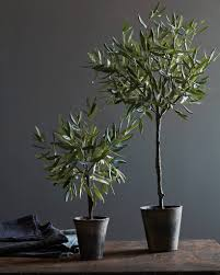 Pre Lit Topiary Campania Olive Topiary Balsam Hill
