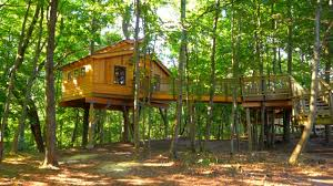 this treehouse is a nature kid u0027s dream come true youtube