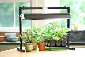 best light for plants plant light stands indoor grow lights and stands grow light plant