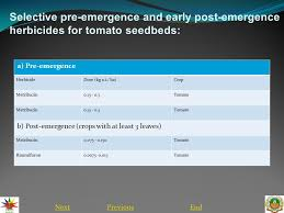 nextend integrated weed management in tomato introduction