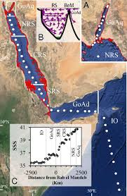 Map Of The Red Sea Basin Scale Estimates Of Pelagic And Coral Reef Calcification In
