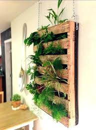 indoor wall garden wall garden kit greenfain