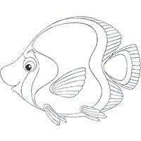 image detail free printable fish coloring pages