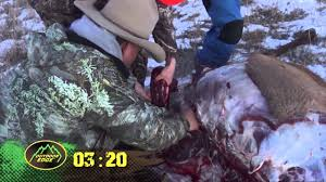 fred eichler how to quarter an elk in less than 10 min gutless
