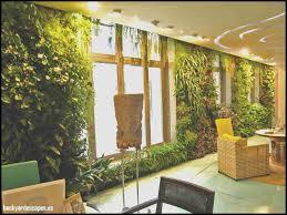 lovely indoor garden home backyard escapes
